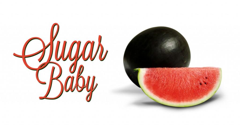 sugar_baby_fblink